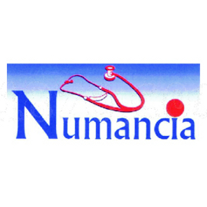 Logotipo Centro de reconocimiento Numancia