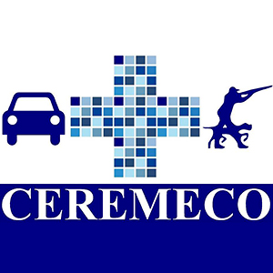 Logotipo Ceremeco